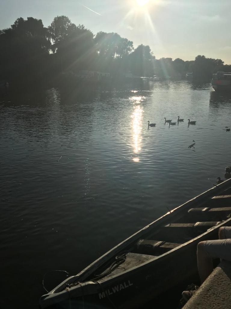Thames Walk Sundown - Gimme Veg!